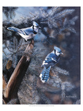 Une touche de bleu Posters par Kevin Daniel