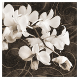 Orchid and Swirls II Plakater af Christine Zalewski