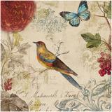 Nature's Rhapsody I Affiches par Aimee Wilson