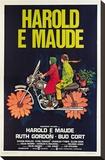 Harold et Maude|Harold and Maude Toile tendue sur châssis