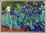 Íris, Saint-Remy, c.1889 Pôsters por Vincent van Gogh