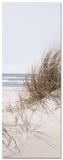 Sea Of Dunes Poster