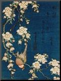 Goldzeisig und Kirschbaum, ca. 1834 Druck aufgezogen auf Holzplatte von Katsushika Hokusai