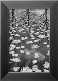Drei Welten Kunstdruck von M. C. Escher