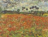 Field of Poppies Auvers-sur-Oise Kunstdrucke von Vincent van Gogh