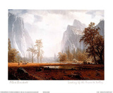 Looking Up the Yosemite Valley Foto van Albert Bierstadt