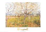 Le verger Affiches par Vincent van Gogh
