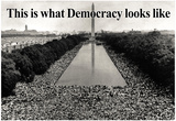 What Democracy Looks Like Poster Posters