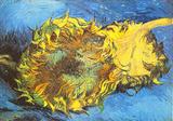 Tournesol Pôsters por Vincent van Gogh