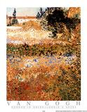 Garden in Arles Jardin a Arles Poster af Vincent van Gogh