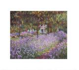 The Artist's Garden at Giverny Poster av Claude Monet