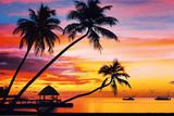 Velavary Sunset Art Print Poster Plakater