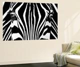 Rocco Sette Black and White Zebra Mini Mural Huge Poster Art Print Mural de papel de parede