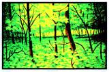 Summer Woods Flocked Blacklight Poster Art Print Bilder