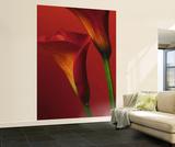 Red Calla Lilies Huge Wall Mural Art Print Poster Mural de papel de parede