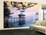Zen Step ins Wasser Fototapete Wandgemälde