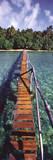 Onne van der Wal Bridge to Paradise Art Print Poster Pósters