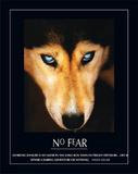 No Fear Hellen Keller Quote Dog Art Print Poster Poster
