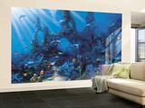 Dolphin Paradise Mural de papel de parede