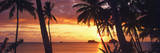Tropical Sunset Panorama Art Print Poster Láminas