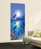 Dolphin in the Sun Giant Mural Poster Mural de papel de parede
