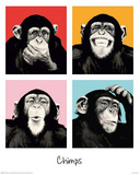 The Chimp Pop Art Print Poster Affischer