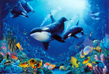 Delight of Life Underwater Scene Art Print Poster Posters