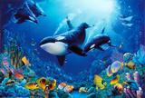 Delight of Life Underwater Scene Art Print Poster Poster