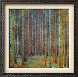 Tannenwald (Pine Forest), 1902 Framed Canvas Print by Gustav Klimt