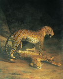 Two Leopards Playing Posters af Jacques-Laurent Agasse
