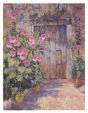 Hollyhocks Round The Old Prints by Jackie Simmonds