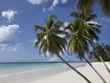 White Sand Beach, Bridgetown, Barbados, West Indies, Caribbean, Central America Fotografisk tryk af Angelo Cavalli