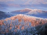 Snow and Rime Ice Coat a Blue Ridge Mountain Landscape at Dawn Reproduction photographique par Amy & Al White & Petteway