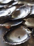 A Black Pearl in an Oyster Shell Fotografie-Druck von Aaron Huey
