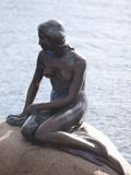 Little Mermaid, Copenhagen, Denmark, Scandinavia, Europe Fotografisk trykk av Frank Fell