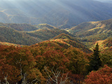 Blue Ridge Mountains in Autumn Hues with Rays of Sunlight Reproduction photographique par Amy & Al White & Petteway
