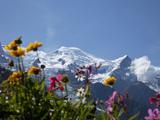 Mont Blanc, Chamonix, Haute Savoie, French Alps, France, Europe Impressão fotográfica por Angelo Cavalli