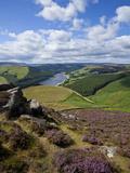 Derwent Edge, Ladybower Reservoir, and Purple Heather Moorland in Foreground, Peak District Nationa Lámina fotográfica por Neale Clark