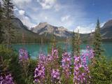 Emerald Lake, Yoho National Park, UNESCO World Heritage Site, British Columbia, Rocky Mountains, Ca Impressão fotográfica por Martin Child