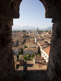 View from the Giunigi Tower, Lucca, Tuscany, Italy, Europe Fotografisk tryk af Oliviero Olivieri