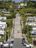 World's Steepest Street, Baldwin Street, Dunedin, Otago, South Island, New Zealand, Pacific Photographic Print by Michael Snell