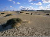Sand Dunes, Near Corralejo, Fuerteventura, Canary Islands, Spain, Atlantic, Europe Fotografie-Druck von Stuart Black