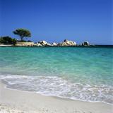 Palombaggia Beach, Near Porto Vecchio, South East Corsica, Corsica, France, Mediterranean, Europe Reproduction photographique par Stuart Black
