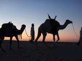 Camel Drivers at Dusk in the Sahara Desert, Near Douz, Kebili, Tunisia, North Africa, Africa Stampa fotografica di  Godong