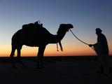 Camel Driver at Dusk in the Sahara Desert, Near Douz, Kebili, Tunisia, North Africa, Africa Stampa fotografica di  Godong