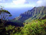 View Above the Na Pali Coast, Kauai, Hawaii, USA Fotografisk trykk av Christopher Talbot Frank