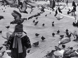 Pigeons in Piazza San Marco, Venice, Veneto, Italy Fotografisk tryk af Walter Bibikow