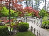 Nishinomiya Japanese Garden, Manito Park, Spokane, Washington, Usa Fotografie-Druck von Jamie & Judy Wild