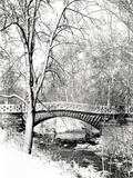 Garfield Park, Indianapolis City Park, Indiana, Usa Impressão fotográfica por Anna Miller