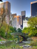 USA, New York, Manhattan, Central Park, the Pond Impressão fotográfica por Alan Copson